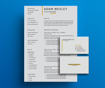 Free Minimal Resume / CV, Business Card PSD Template
