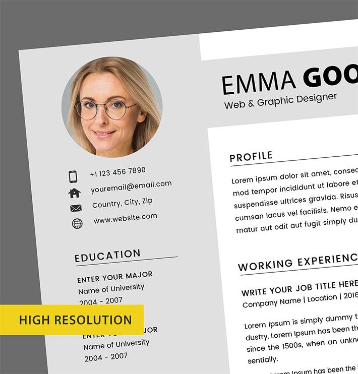 Professional Resume / CV